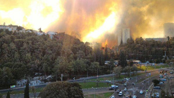 Kebakaran di Israel